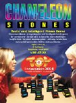Chameleon Stones - Recent Toys International